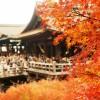 清水寺で紅葉デート 時期や混雑状況、行き方は?ライトアップは必見!