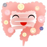 <span>すんき</span>に含まれる乳酸菌で花粉症改善?しわやうつに効く菌は?