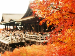 清水寺の紅葉デート