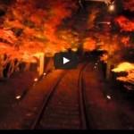 叡山電鉄の<span>紅葉トンネル</span>はライトアップ必見!見頃と混雑でも乗りたい車両